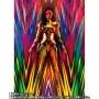 Wonder Woman 1984 S.H. Figuarts WONDER WOMAN Golden Armor