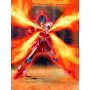 Saint Seiya Myth Cloth SKYCLOTH SHO Revival